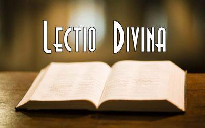 Riprende la Lectio Divina